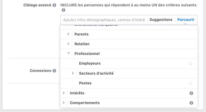 Capture d'écran des possibilités de ciblage avancé pour les publicités Facebook.